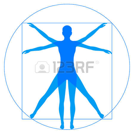 54712243-leonardo-da-vinci-vetruvian-man-human-anatomy